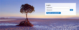 login-graphic